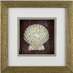 Quadro decorativo con Conchiglia - 26x26 cm