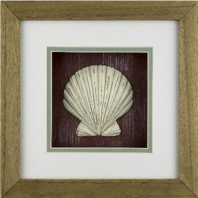 NA 56007 - Quadro decorativo con Conchiglia - 26x26 cm